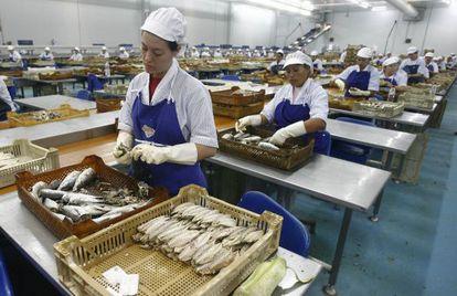 Trabajadoras en una conservera de Huelva.