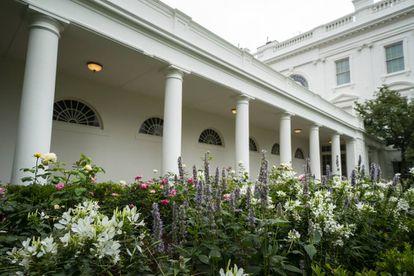 La rosaleda, a finales de verano, llena de rosas en tonos pastel. Se ha mantenido una variedad plantada en honor de la primera visita a la Casa Blanca del papa Juan Pablo II en 1979, así como la 'JFK rose', ambas de color blanco e intenso perfume.  