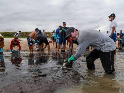 Recogida de restos de crudo este domingo en el cabo de Santo Agostinho, en Pernambuco.