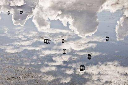 Caballos marismeños de que viven gran parte del año en las aguas someras de la marisma de Doñana