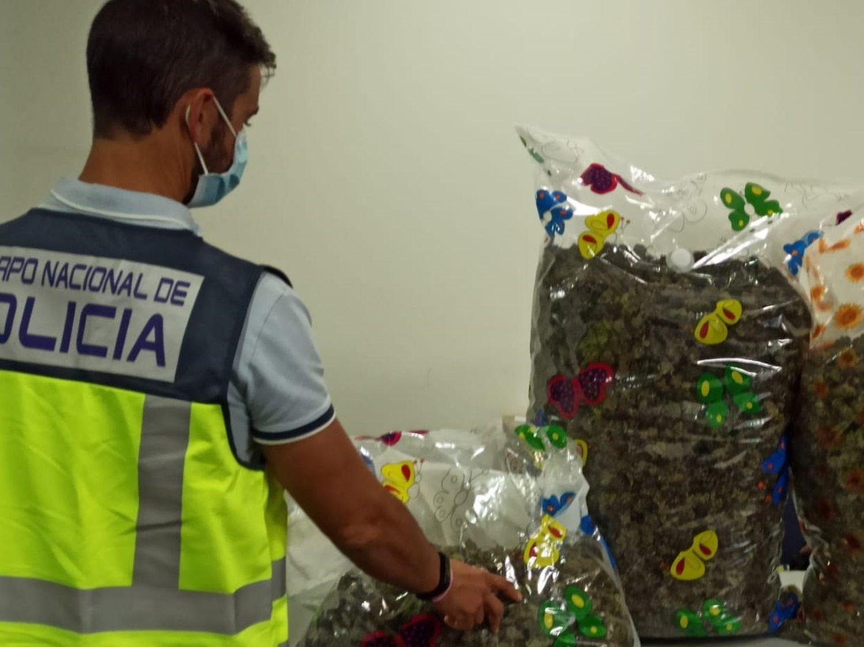 La Policía Nacional detuvo a ocho personas en distintas operaciones por tráfico de drogas durante la campaña de navidad.