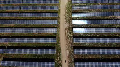 Una planta fotovoltaica en la provincia de Cáceres.