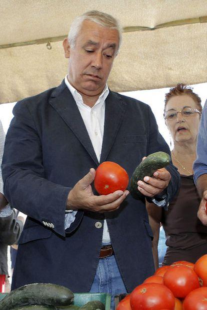 Javier Arenas, en el mercado de Carmona.