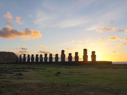Los creadores de los moáis de la Isla de Pascua eran hasta ahora los principales candidatos del contacto entre polinesios y americanos.