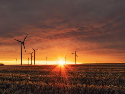 Las renovables, la red energética del futuro