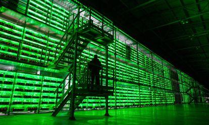Un guardia armado recorre las instalaciones del BitRiver Rus LLC, la granja de bitcoins más grande de Rusia, ubicada en Bratsk. Estas instalaciones albergaron antaño el mayor centro de datos de la URSS. Hoy tiene clientes  de Japón, China o EE UU, la mayoría de ellos mineros de bitcoin.