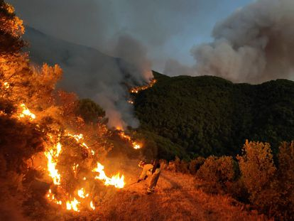Bomberos forestales luchan por apagar las llamas en el incendio de Sierra Bermeja (Málaga), el 18 de septiembre.