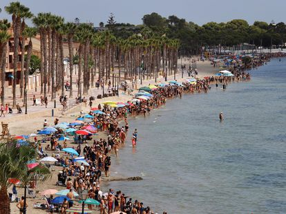 Miles de personas han formado una cadena humana este sábado a orillas del Mar Menor en señal de protesta por el desastre ecológico que sufre la zona.