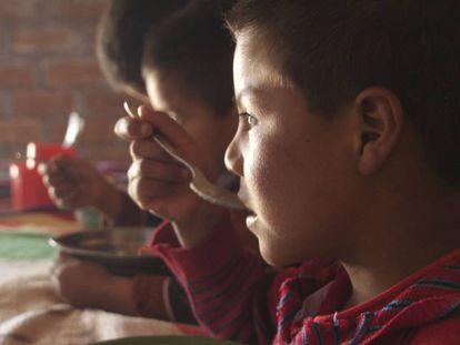 Niño de Yanapampa, una de las 19 comunidades de la región andina de Ayacucho, en el sur de Perú, donde la ONG internacional Acción Contra el Hambre llevó a cabo un programa de reducción de la anemia infantil.