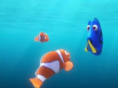 Fotograma del trailer