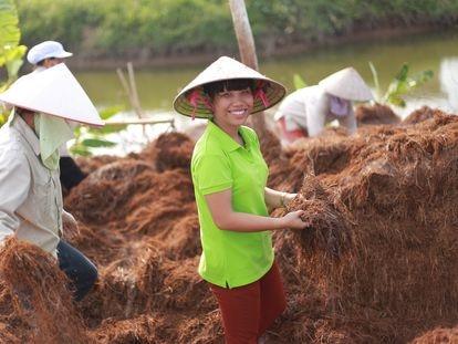 Tran Thi Khanh Trang en los arrozales.