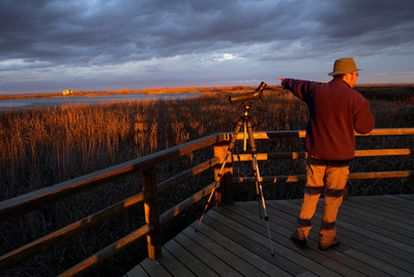 Un ornitólogo señala hacia un observatorio de aves en la Laguna de la Nava, en Fuentes de Nava (Palencia).