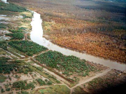 La imagen, tomada en noviembre de 1962, muestra el efecto del agente naranja en la margen derecha del río.