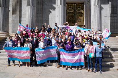 Colectivos LGTBI, junto a los promotores de la iniciativa, en la puerta del Congreso, este martes.