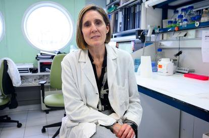 La investigadora del CSIC Isabel Sola