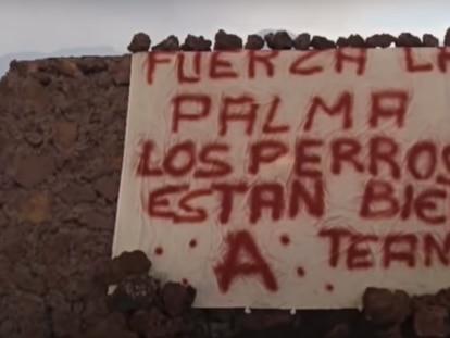 Captura del vídeo donde se muestra la pancarta que anuncia el rescate de los perros.