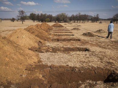 Un trabajador pasa frente a las tumbas recién excavadas en el cementerio de Honingnestkrans, al norte de Pretoria, Sudáfrica, el jueves 9 de julio de 2020. Los Centros para el Control y la Prevención de Enfermedades de África dicen que la pandemia de coronavirus en el continente está llegando a su pico.
