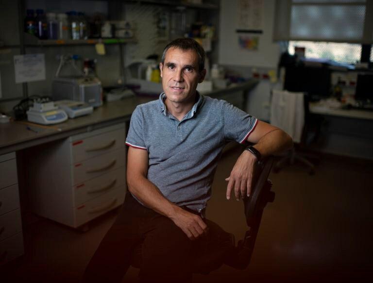 El científico madrileño Alvaro Somoza en su laboratorio dentro de IMDEA Nanociencia, en el norte de Madrid.