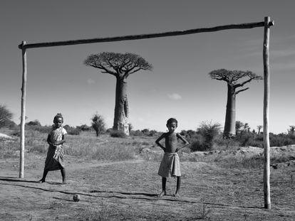 Madagascar, Avenida de los Baobabs.