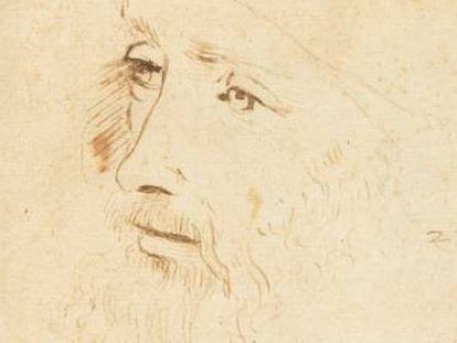 Nuevo retrato de Da Vinci hallado en Londres.