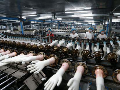 Cadena de producción de guantes de vinilo desechables en una fábrica en China.