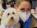 El programa Cuatro patas de apoyo Covid-19, del hospital madrileño 12 de Octubre y la organización Yaracán, llevan realizando desde el mes de septiembre intervenciones asistidas con perros