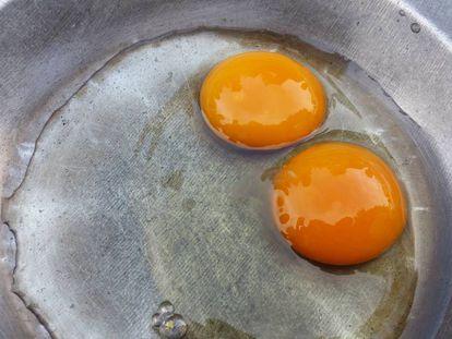 Un huevo de dos yemas de la Sociedad Avícola Di-Huevos, en Dibulla, Colombia.