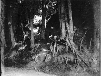 Fotografía tomada en la localidad de Auvers-sur-Oise (norte de París), alrededor de 1907, que muestra las raíces que pintó Van Gogh en su último cuadro.