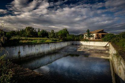 La piscina abandonada, solo tiene agua de lluvia y maleza alrededor.