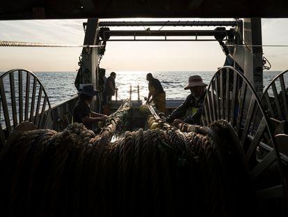 Pesca de arrastre en el Bonamar Dos por el litoral de Barcelona.