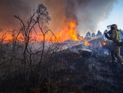 Incendio forestal en Rianxo (A Coruña) a finales de marzo.