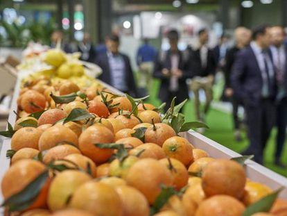 Exposición de frutas en un estand de Fruit Attraction 2019.