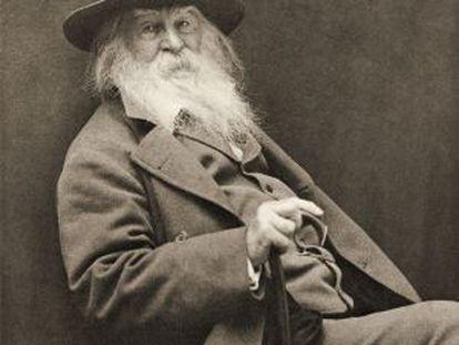 El poeta Walt Whitman (1819 - 1892).