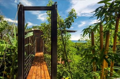 The house, designed by the Olson Kundig studio in Santa Teresa (Costa Rica), is completely built with local ash wood and, with hardly any foundations, wants to behave like just another tree.
