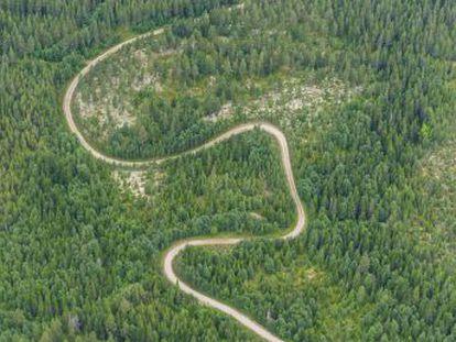 Más de cien compañías de la región de Värmland se asocian para impulsar una explotación sostenible e innovadora de los bosques. Una iniciativa que también frena la despoblación