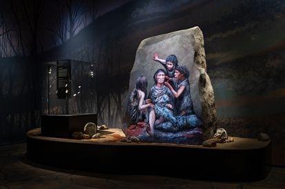 Exposición sobre neandertales en el museo de Moesgaard. / Museo de Moesgaard / Neandertal exhibition