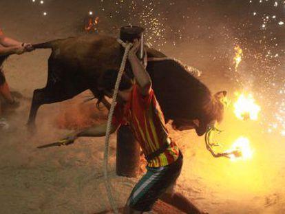 Festejo con un toro embolado.