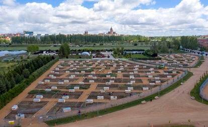Huertos urbanos en la ribera del río Tormes en Salamanca.