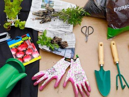 Elementos necesarios para crear un huerto urbano.