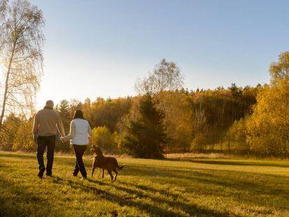 Una pareja pasea con su perro por el campo.