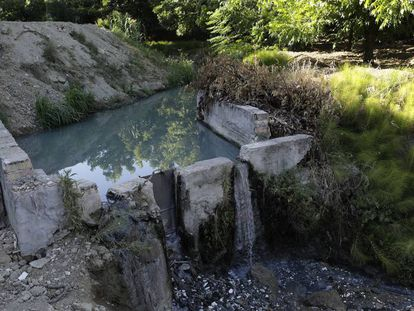 Vertido de aguas residuales al arroyo Mortaja en Coín (Málaga).