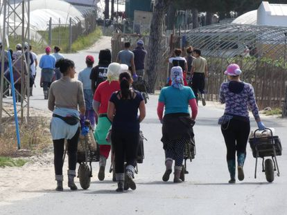 Mujeres tras la recolección de fresas en una finca de la localidad onubense de Palos de la Frontera el pasado mayo.