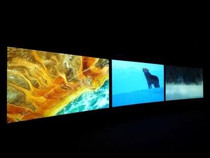 Proyección en la Tàpies de la película de John Akomfrah 'Vertigo Sea'.