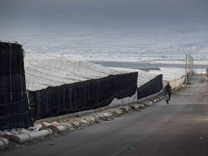 En foto, un hombre cruza en bicicleta entre los invernaderos de El Ejido (Almería). En video: ¿Por qué voté a Vox?