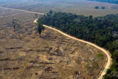 Imagen aérea de una zona de la Amazonía que se incendió en agosto de 2019.