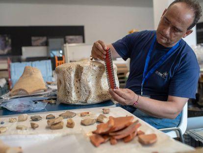 El arqueólogo Darío Bernal observa una vértebra de ballena hallada en el yacimiendo de Baelo Claudia en Bolonia, Cádiz.