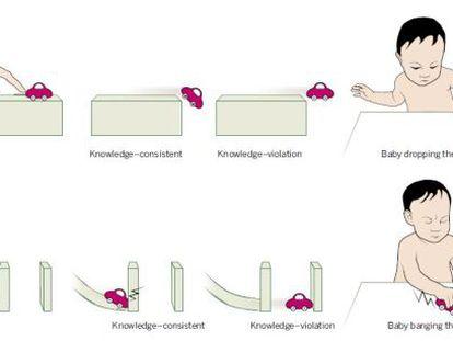 La imagen muestra cómo se comporta el bebé según cómo se comporta el objeto.