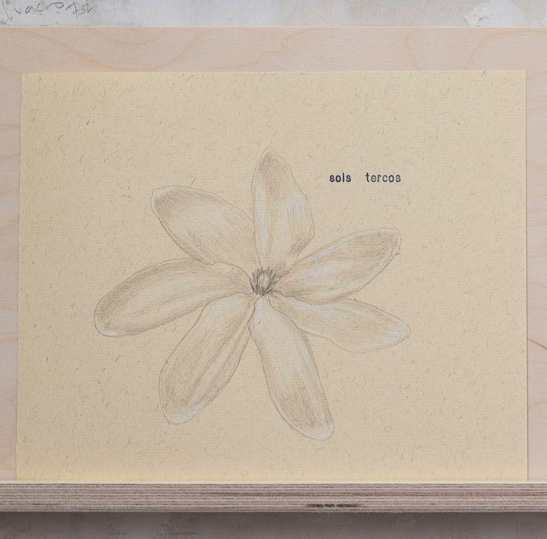 Detalle de la obra 'Sois', de Marta de Gonzalo y Publio Pérez Prieto que forma parte de Apertura Madrid Gallery Weekend.