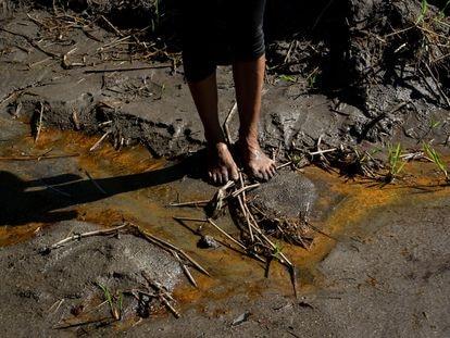Monitoreo de la contaminación de petróleo sobre el río Coca, Ecuador.
