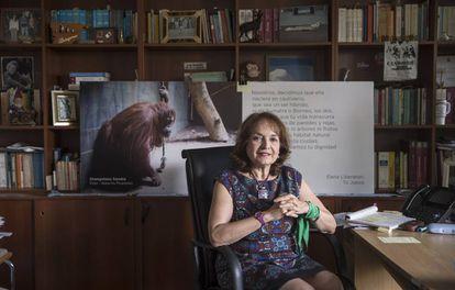 La juez argentina Elena Liberatori, en su despacho.